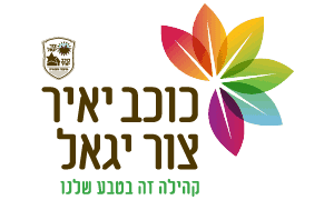 לוגו כוכב יאיר צור יגאל